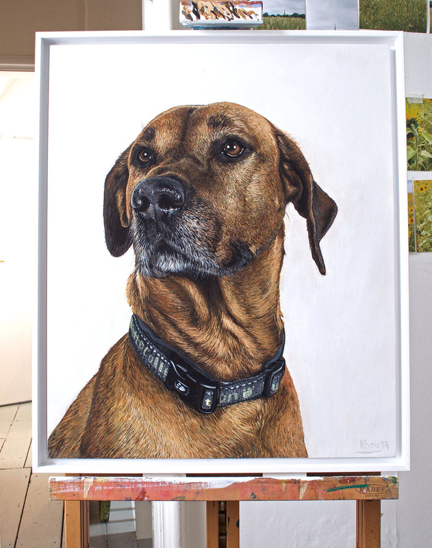 Leo dog portrait painting commissions in Gloucestershire by Fourlegs.co.uk