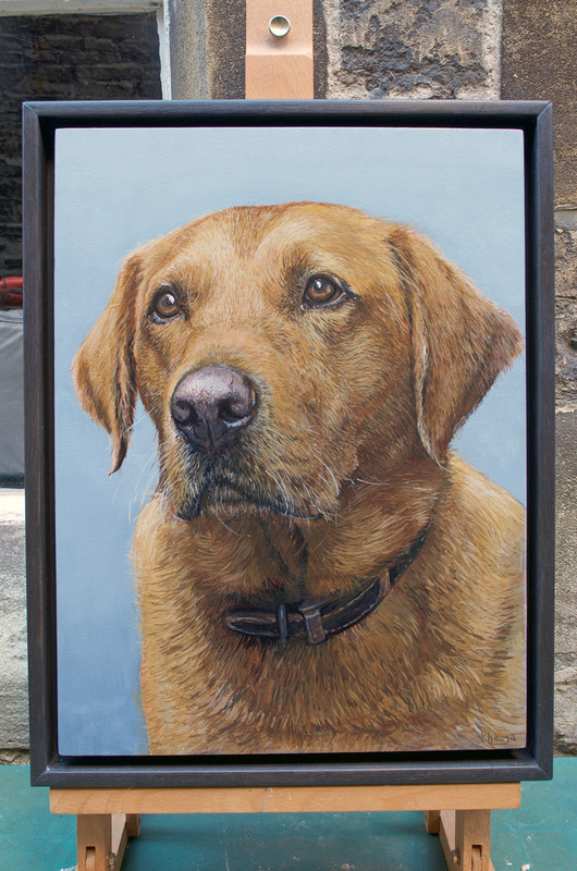 Labrador dog portrait commissions in Gloucestershire by Fourlegs.co.uk