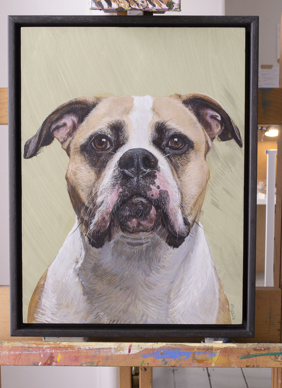 Animal portrait commissions in Gloucestershire UK by Fourlegs.co.uk